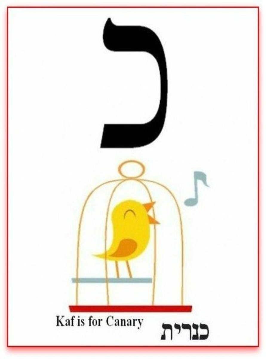 Hebrew Alphabet Letter Kaf or Khaf  – האלפבית אוֹת כף