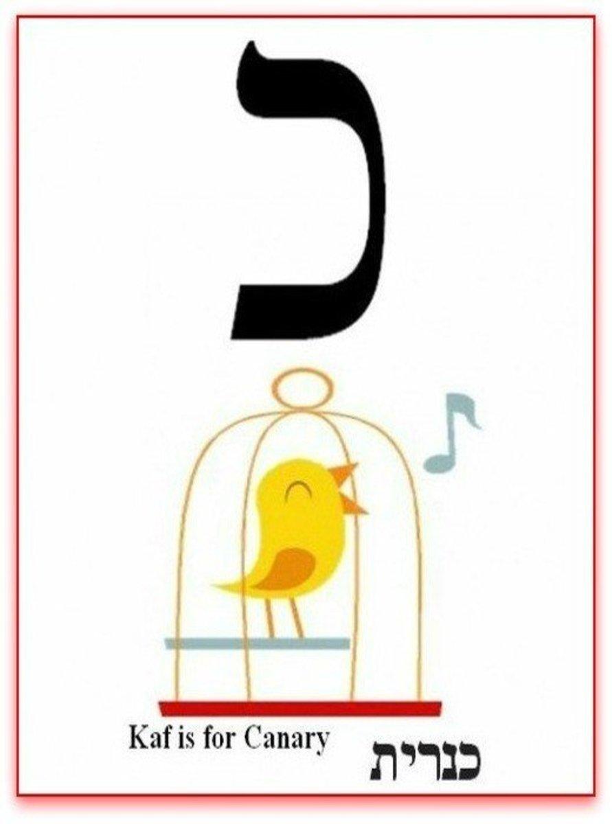 Hebrew Alphabet Letter Kaf or Khaf  – האלפבית אוֹת כף