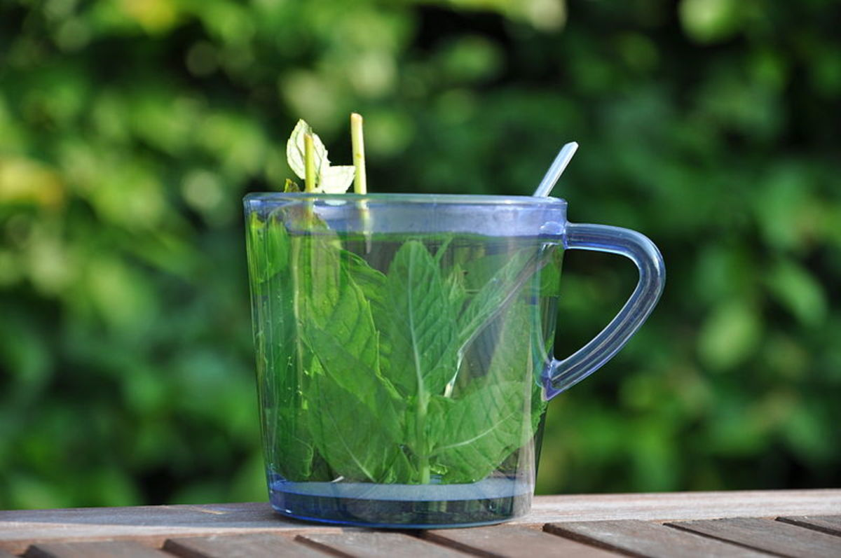 use a glass measuring jug as an alternative to allow your mint oil infuse.