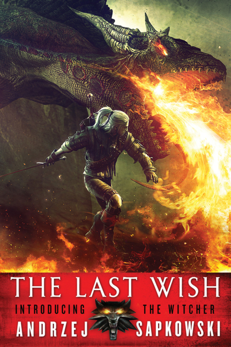 The Last Wish Novel Review