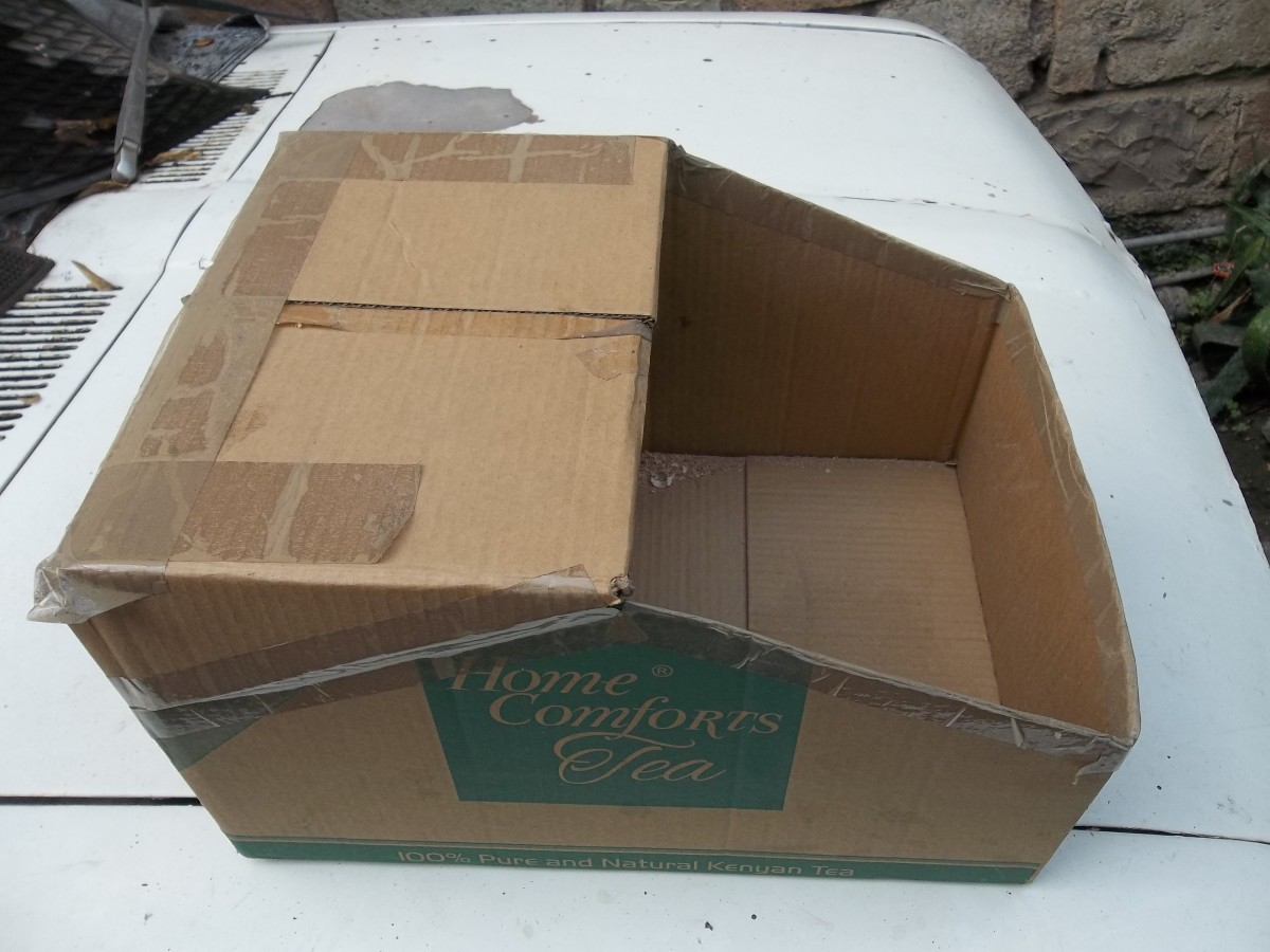 A nesting box made by cutting a carton. In a later successful model, the 'roof' cover was left out without affecting the outcome.