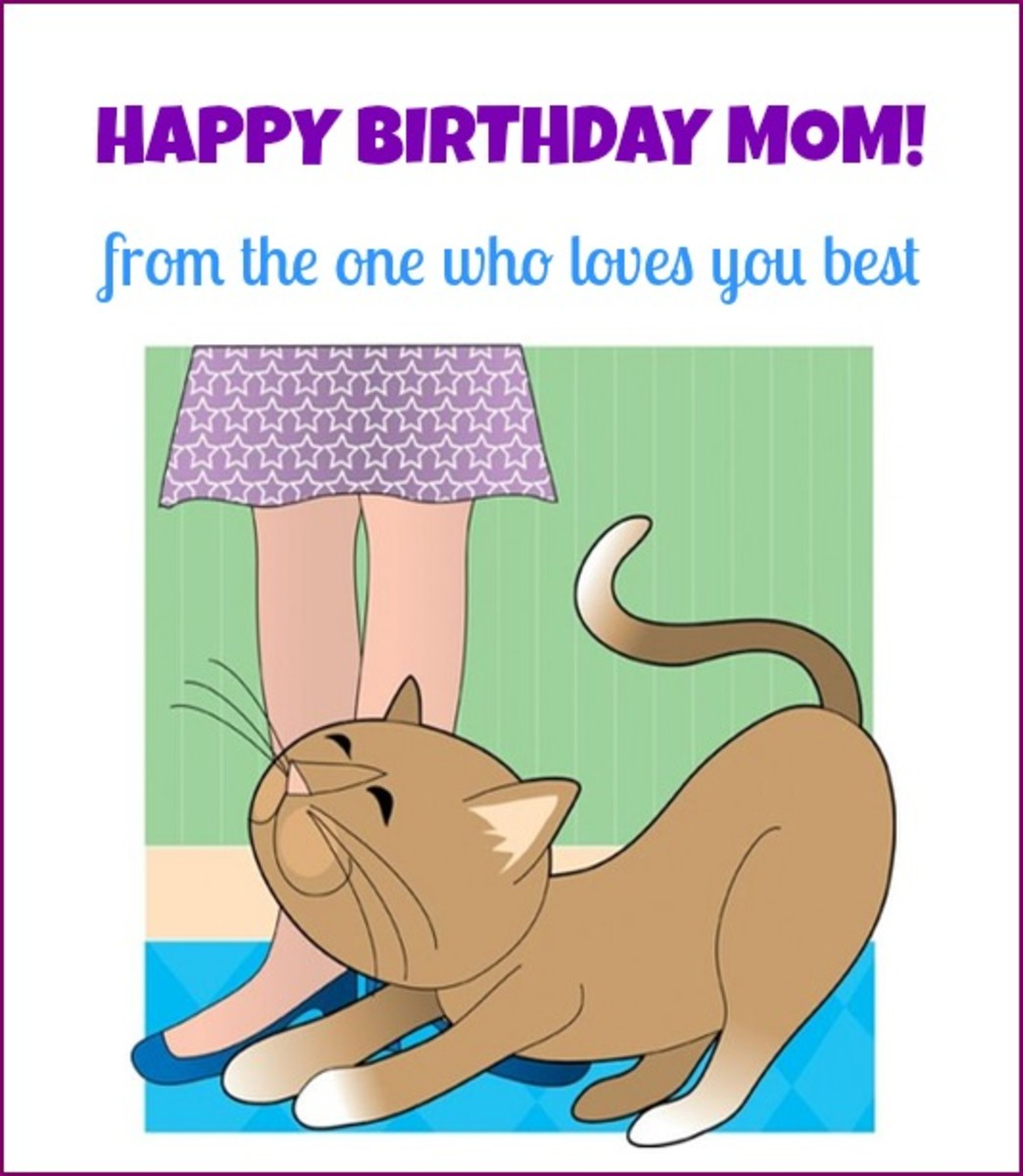 Mother Birthday Quote from Cat