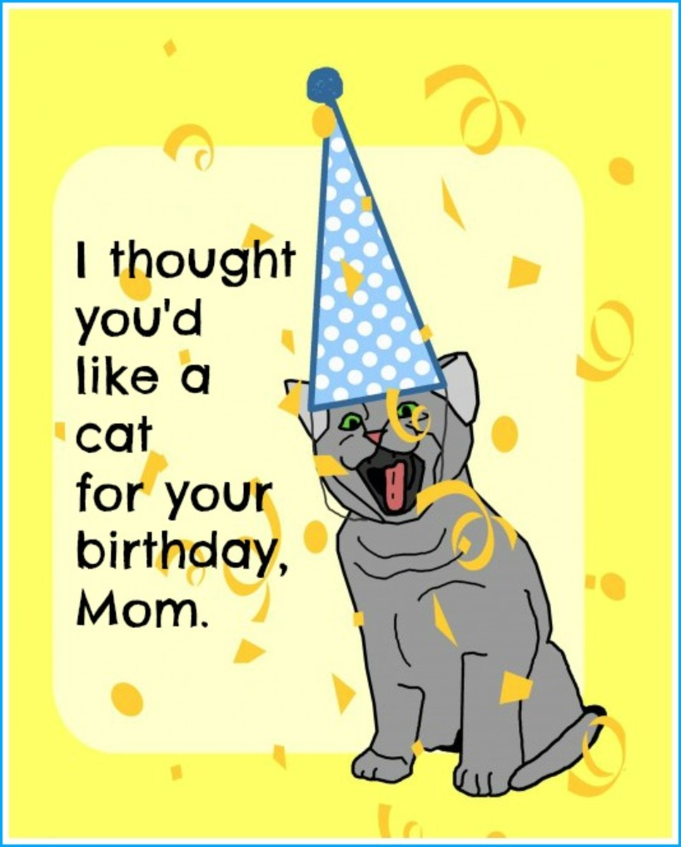 Funny Card About Cats