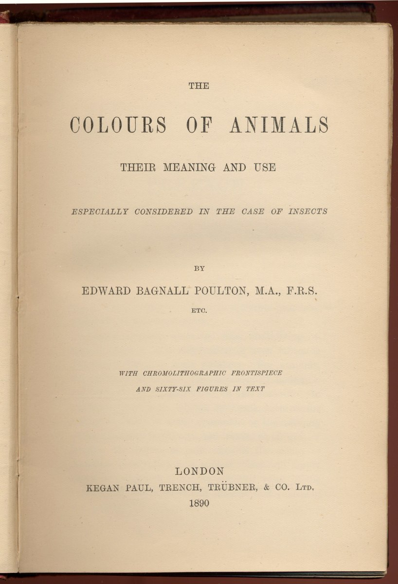 The Colours of Animals by EB Poulton