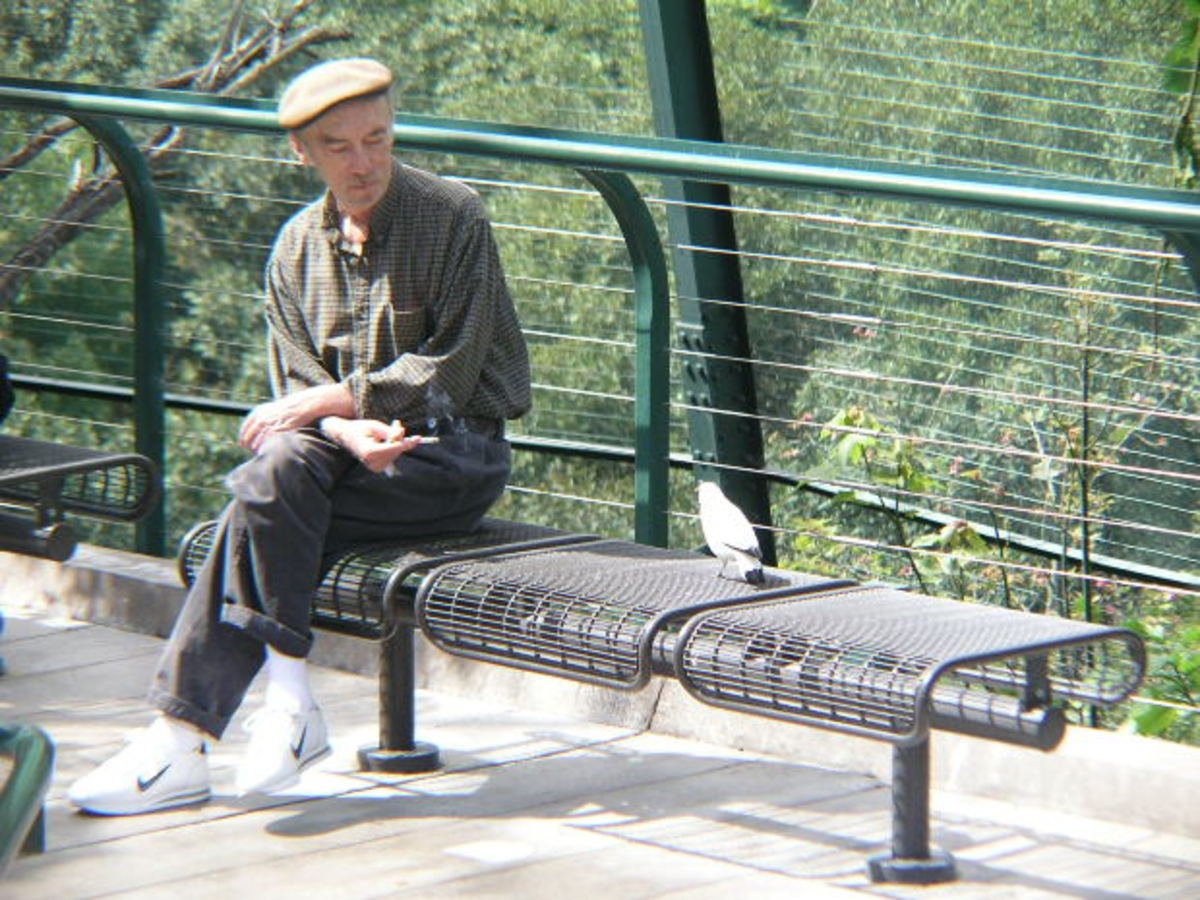 Older man on a park bench