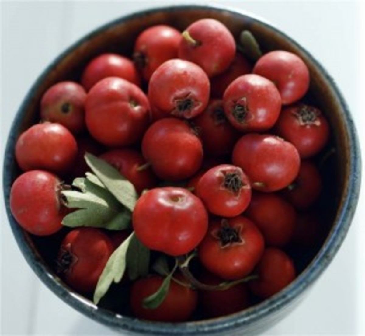 Hawthorn berries in a bowl.