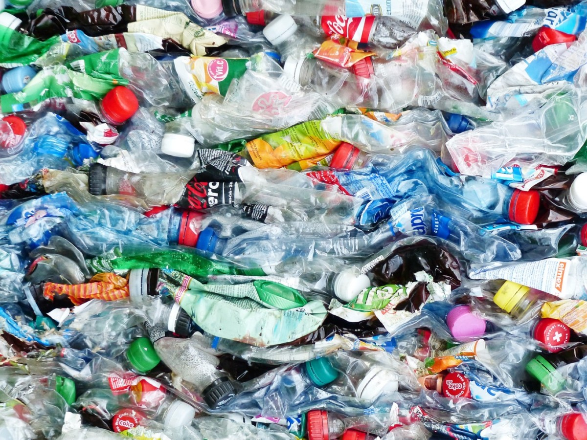 Recycling Plastic and Reducing Poverty: The Plastic Bank
