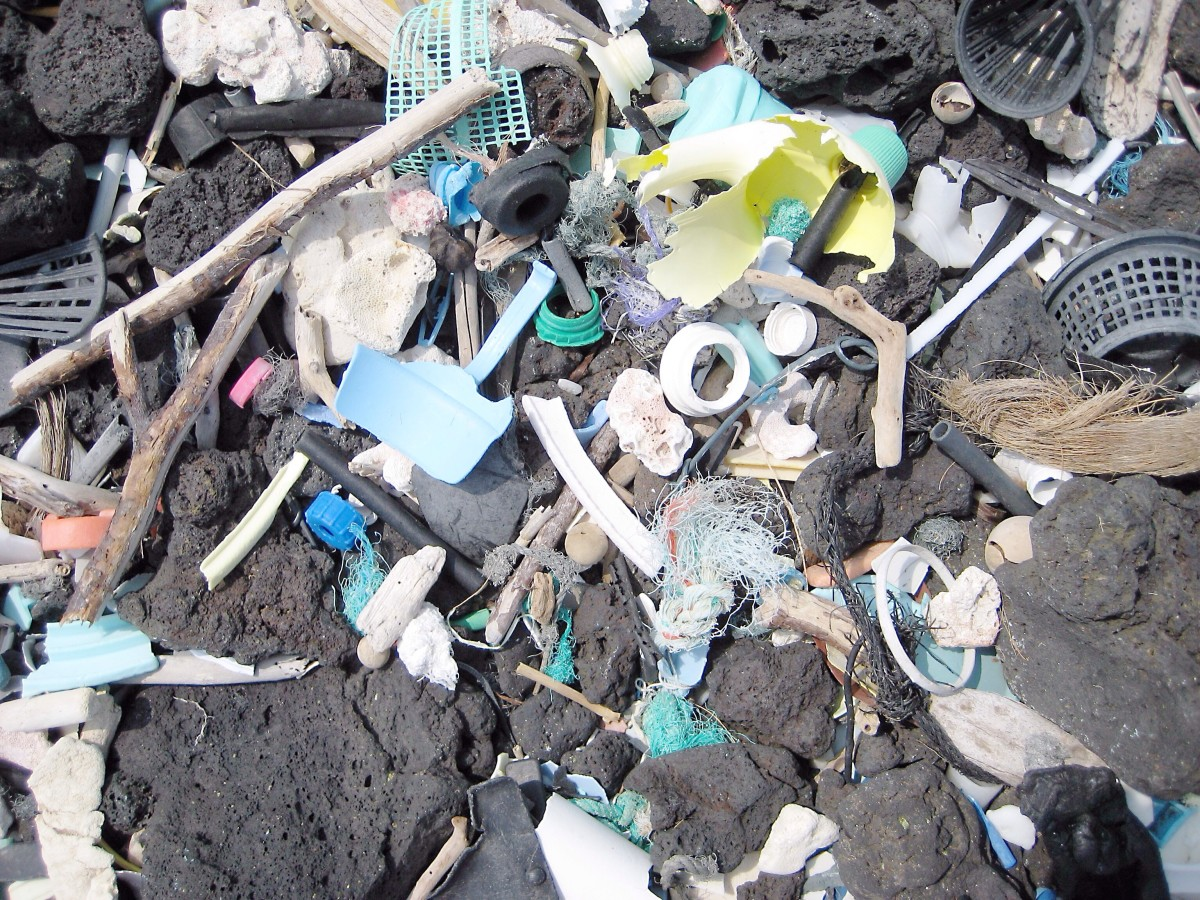 Plastic waste on a Hawaiian beach