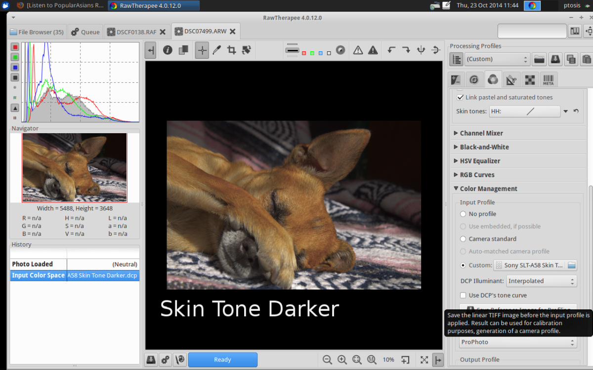 Skin Tone Darker