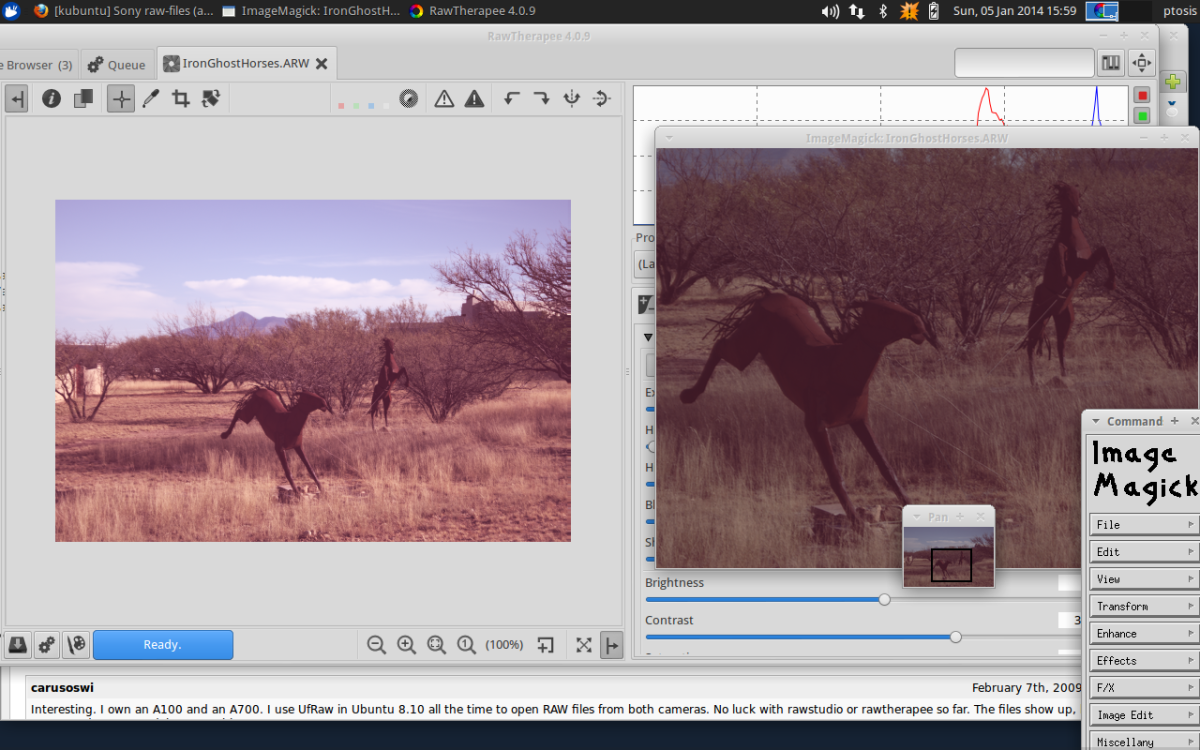 RawTherapee VS ImageMagick on same ARW file, (both suck)