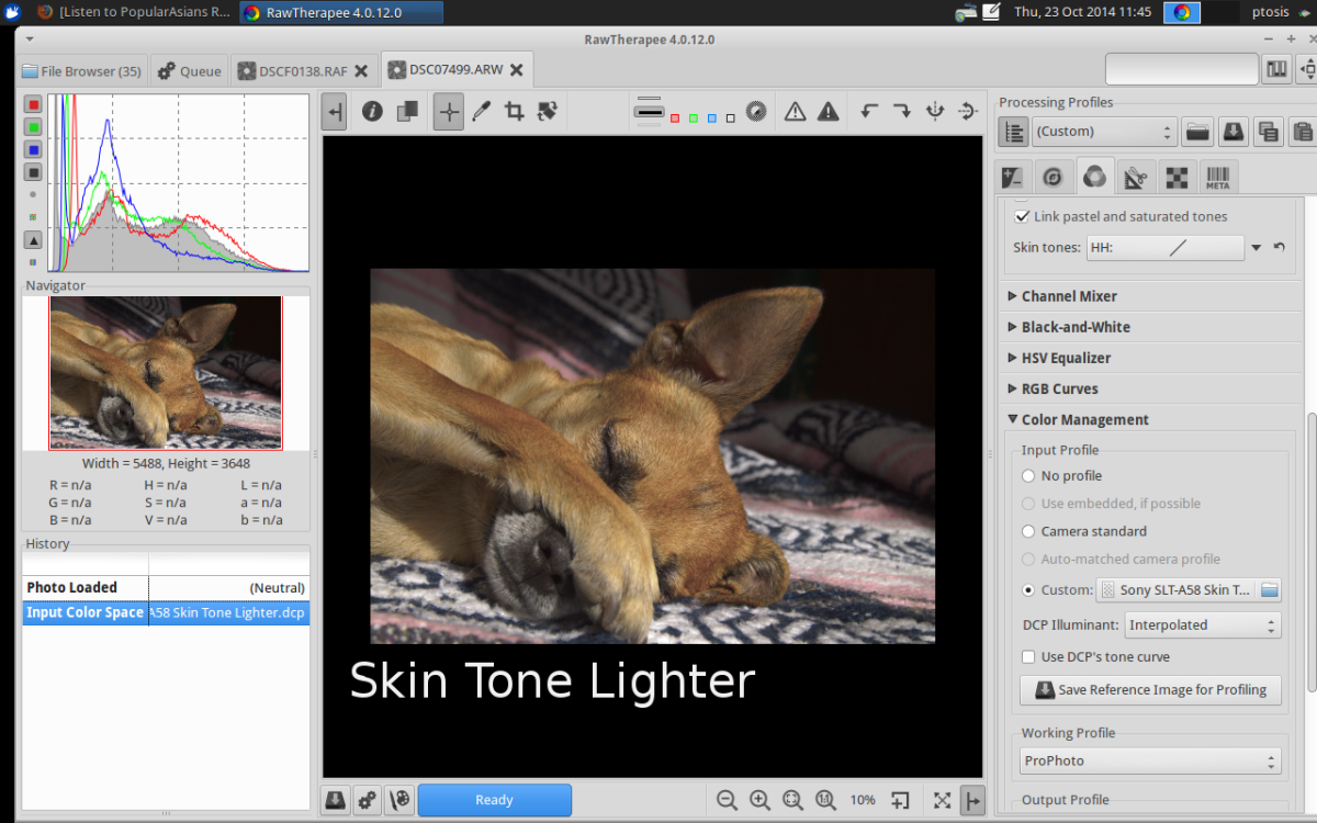 Skin Tone Lighter