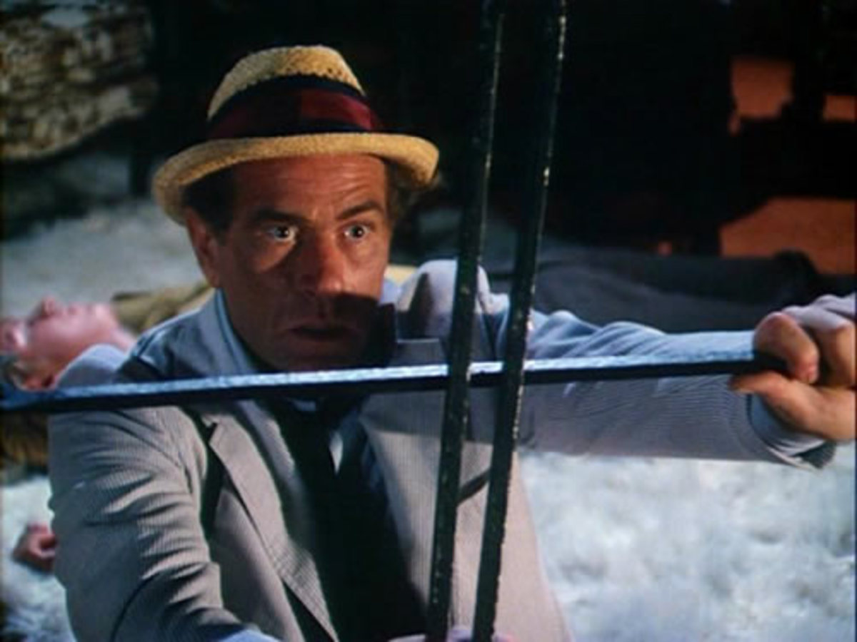 Darren McGavin starred as the Night Stalker