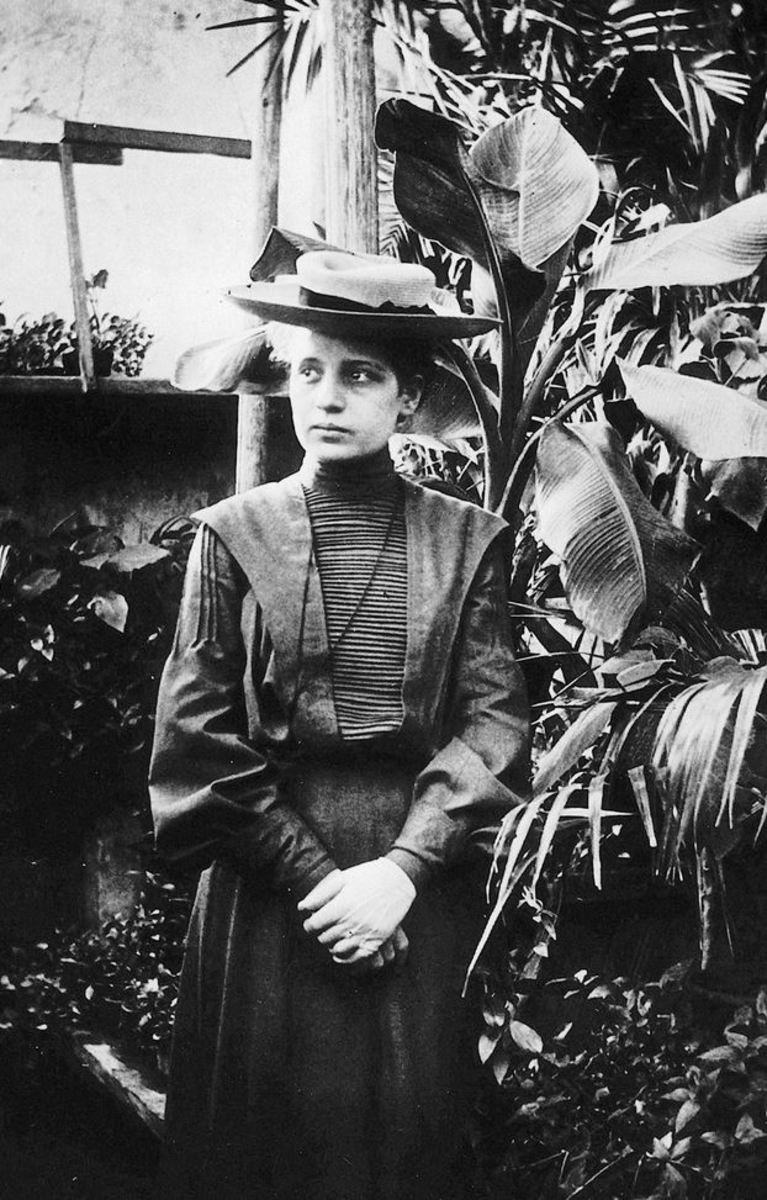 "Albert Einstein praised Lise Meitner as ""the German Marie Curie"". The second woman Doctor of Physics, she was one of the great nuclear scientists of all-time."
