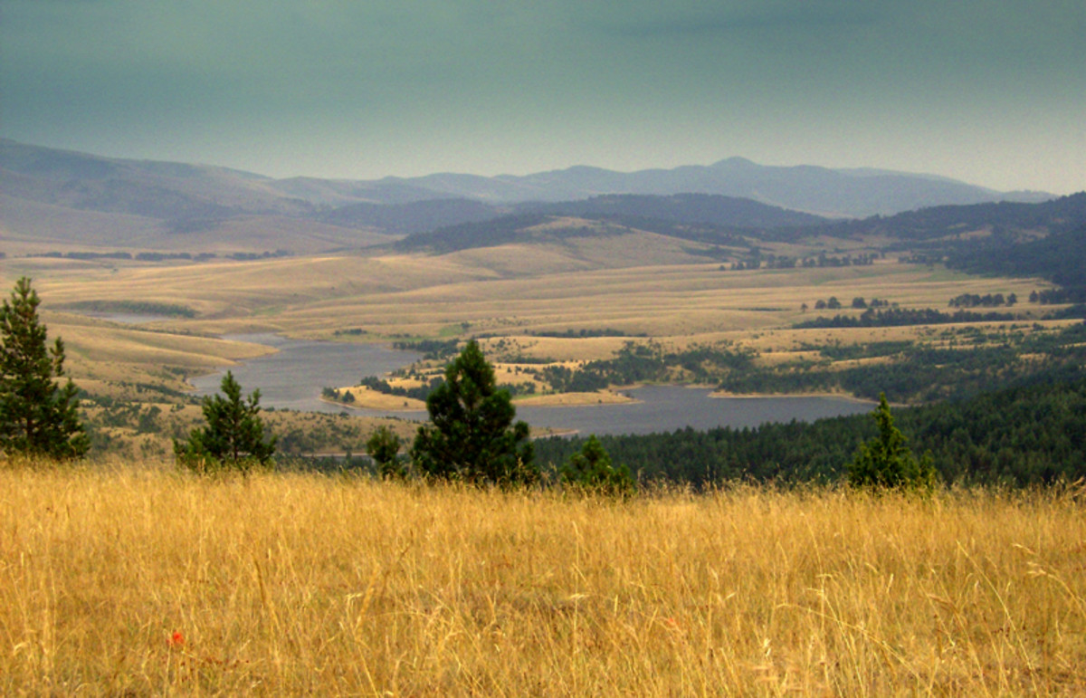 Summer in the Zlatibor Mountain