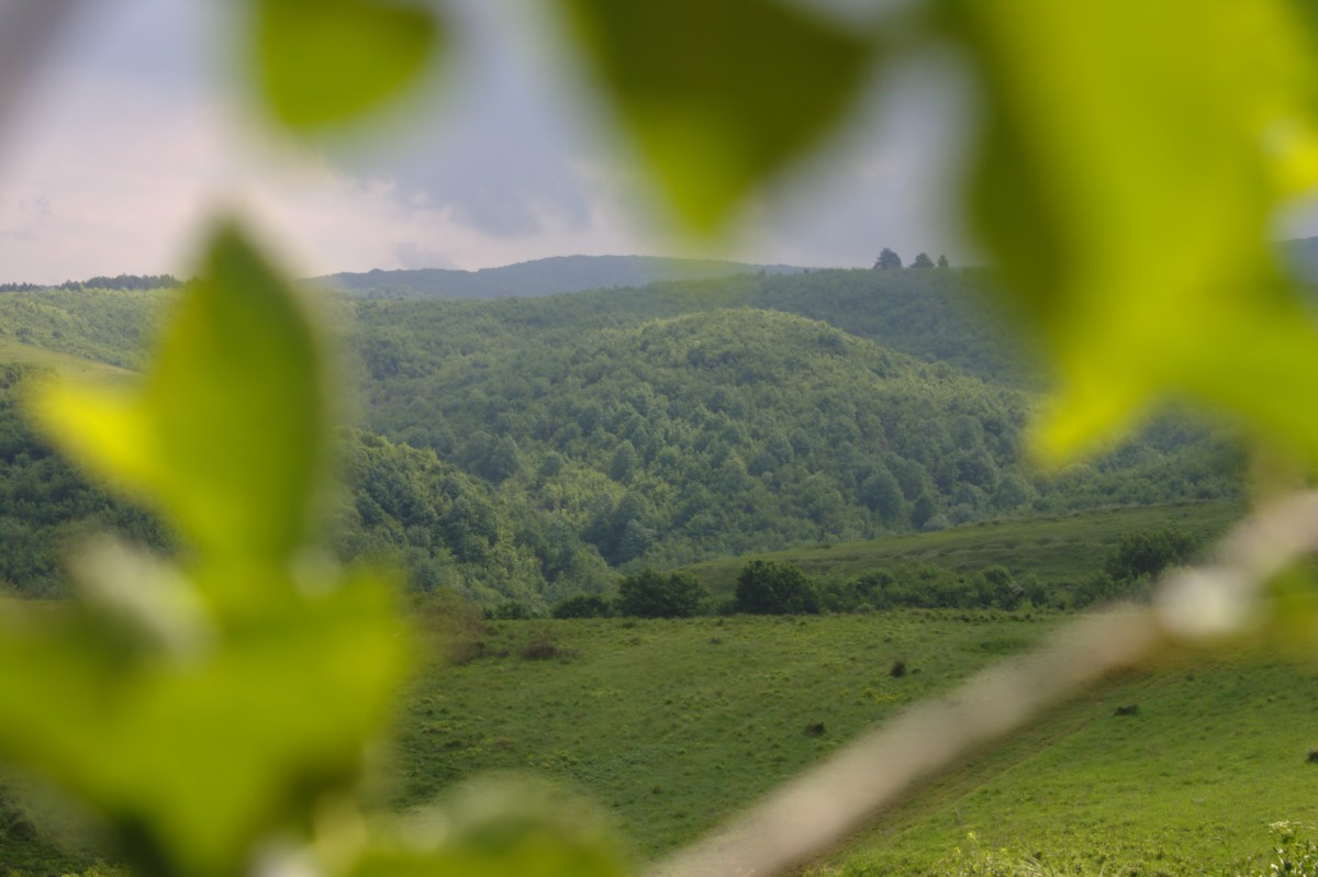 Fruska Gora - unspoiled nature