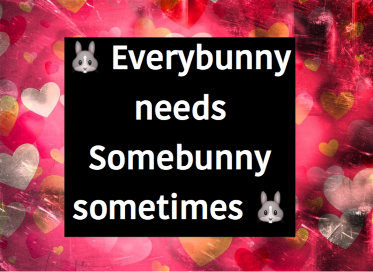 easter-bunny-quotes-and-status-updates