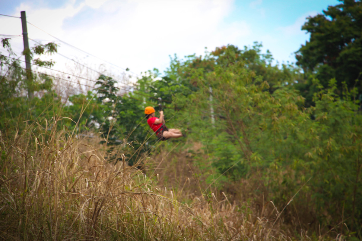 Breathe the fresh air as you glide down via a zipline in La Mesa Eco Park!
