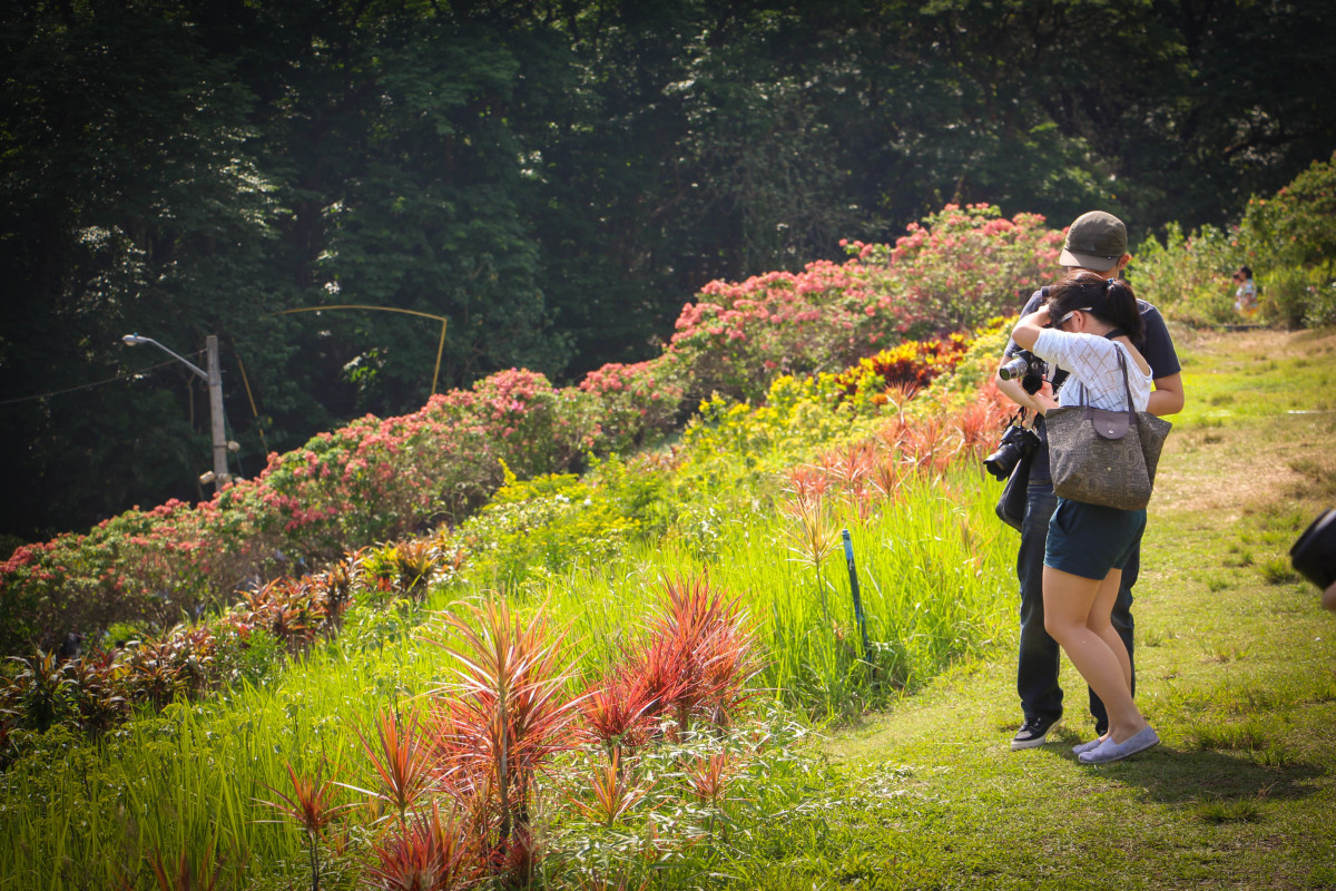 The La Mesa Eco Park can also be a romantic place for couples!