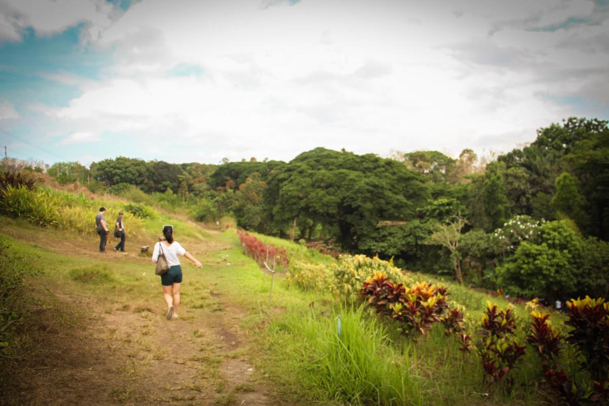 A Picture Perfect Place - The La Mesa Eco Park in Quezon City