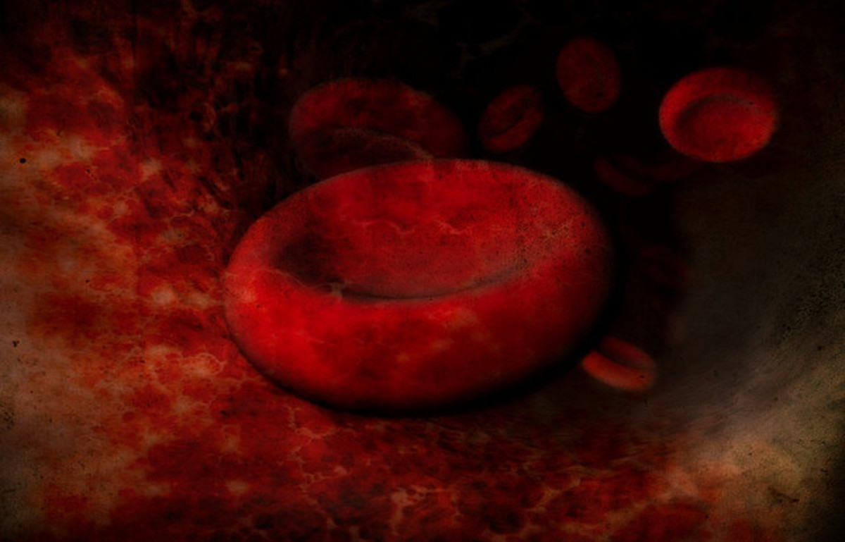Fascinating Blood Theories That Will Make You Question the Origin of Man