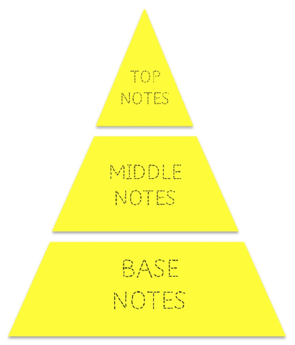 The Fragrance Pyramid