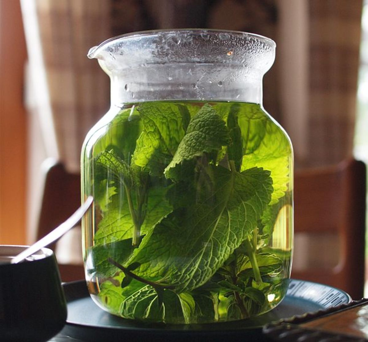 lessons-in-magical-herbalism-lemon-balm