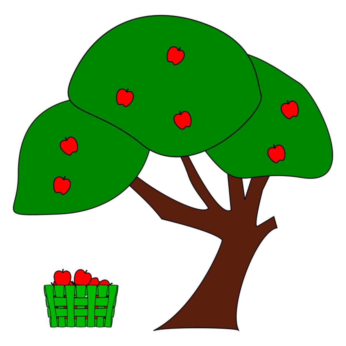 Ripe Apples on Tree with Bushel Basket of Apples