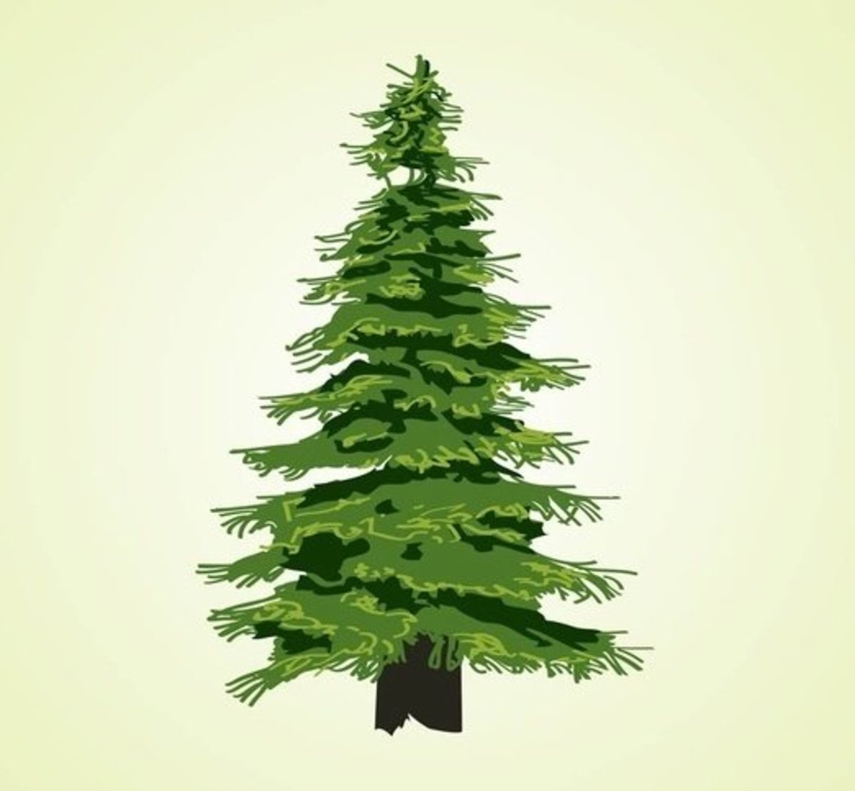 Cedar Tree Graphic