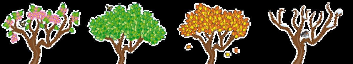 tree-clip-art