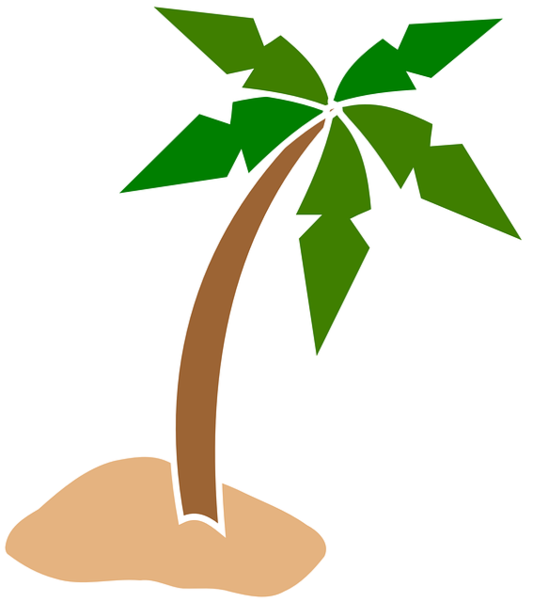 Curved Palm Tree on Beach