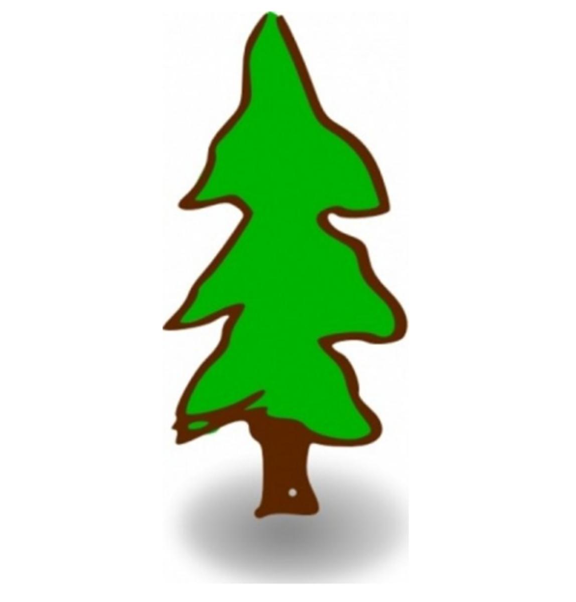 Fir Tree Graphic