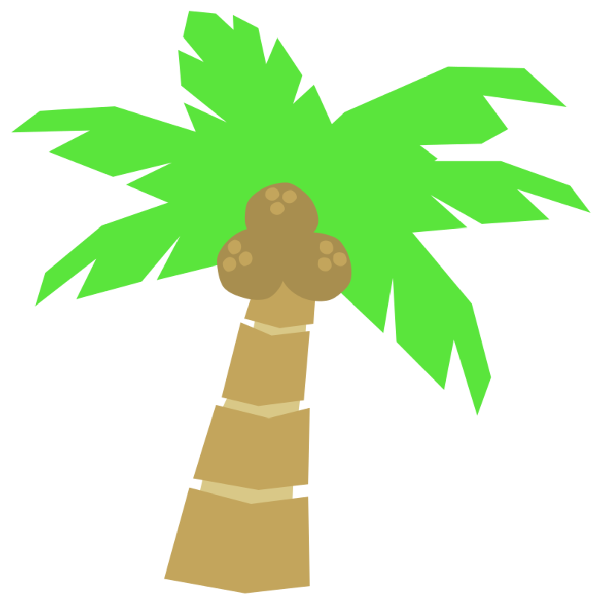 Short Palm Tree with Coconuts