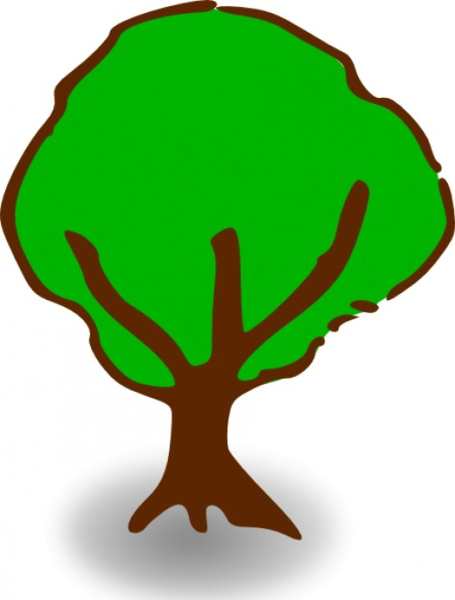 Simple Tree Graphic