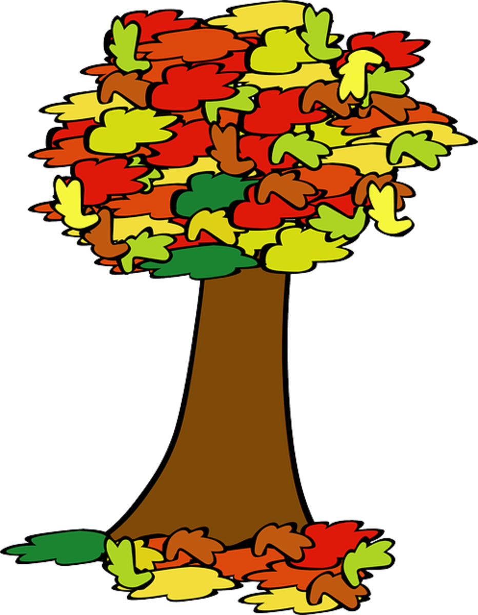 Big Tree with Colored Leaves