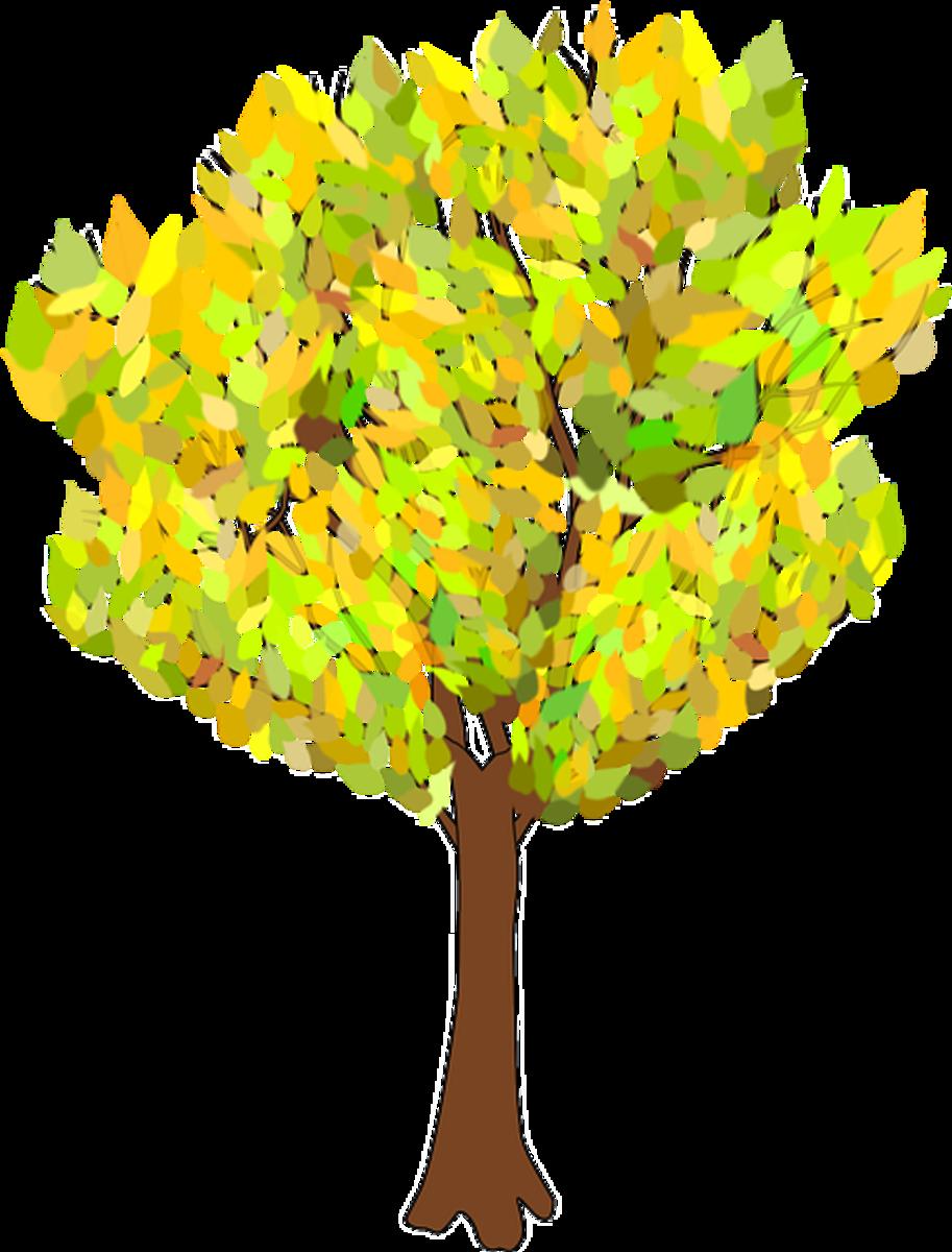 Autumn Tree Clip Art