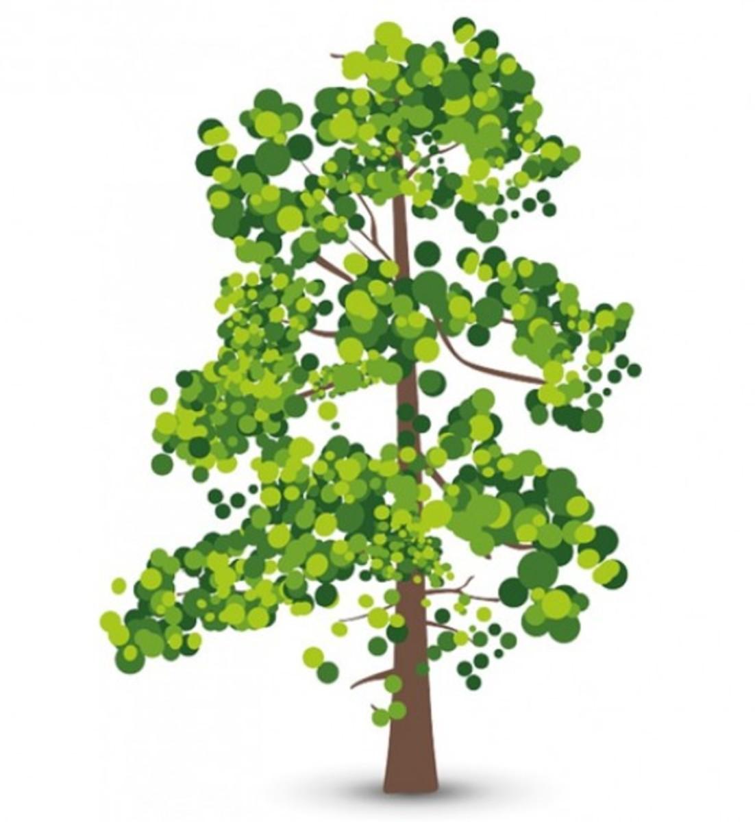 Leafy Green Tree Clip Art