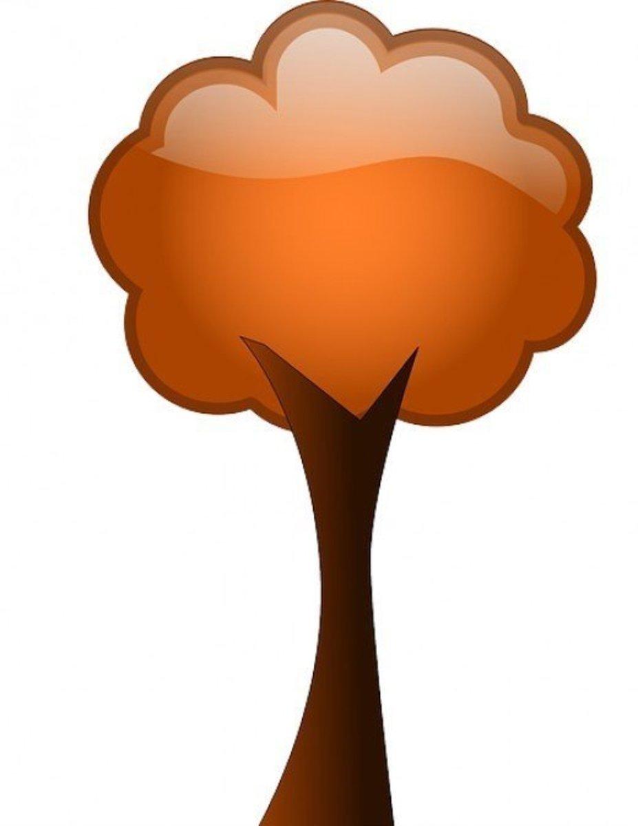 Burnt Orange Fall Tree