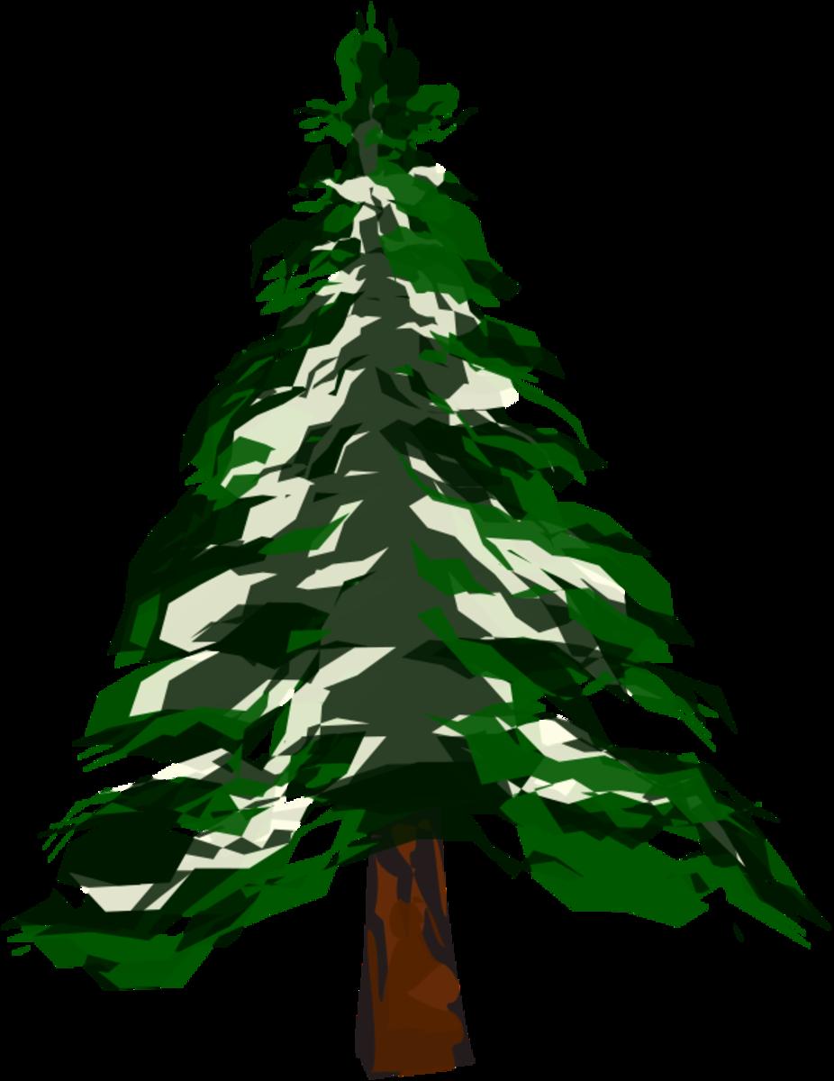 Cedar Tree Clip Art