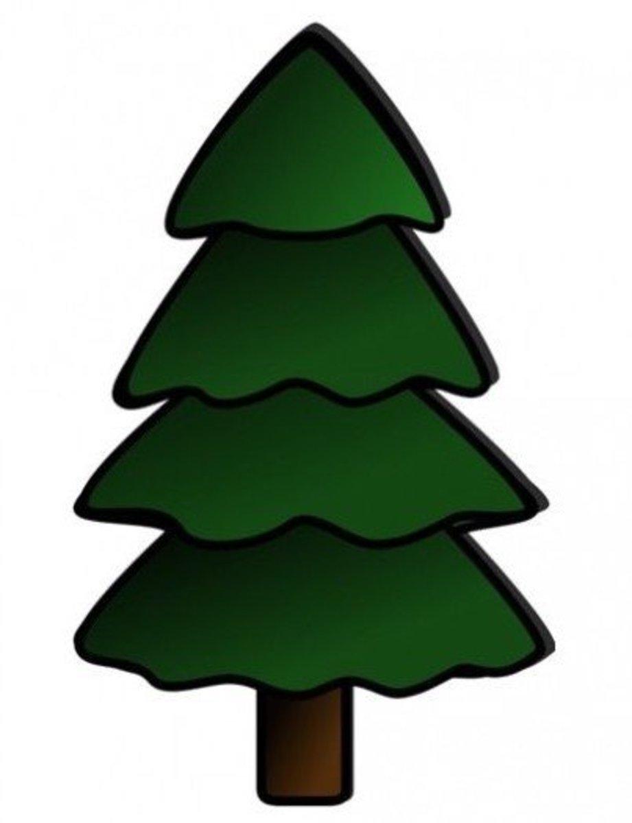 Tall Fir Tree
