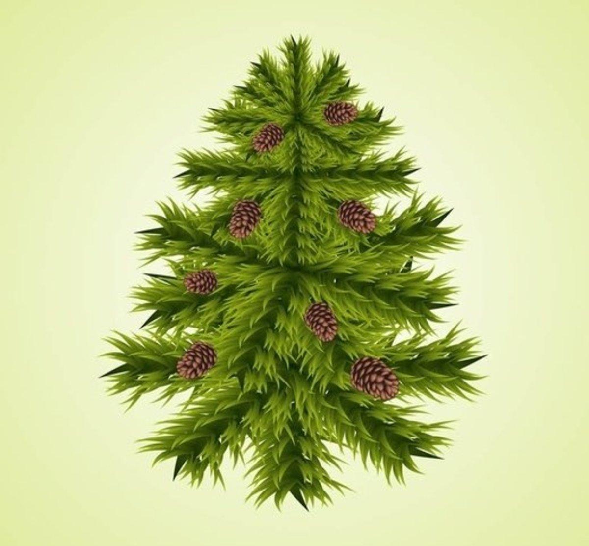Cedar Tree with Pine Cones