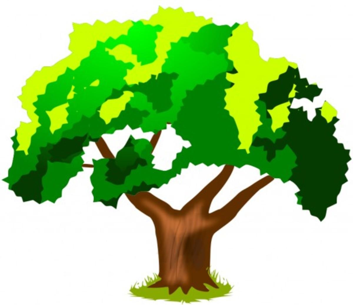 Tri-Color Green Tree