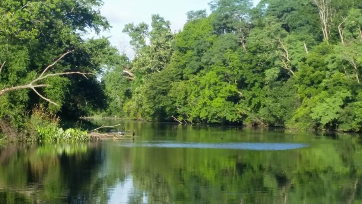 Hickory Creek inside Pilcher Park
