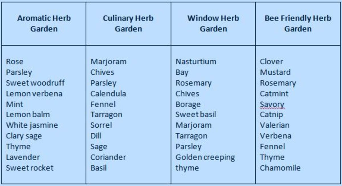 Introduction To Planning A Herb Garden Hubpages