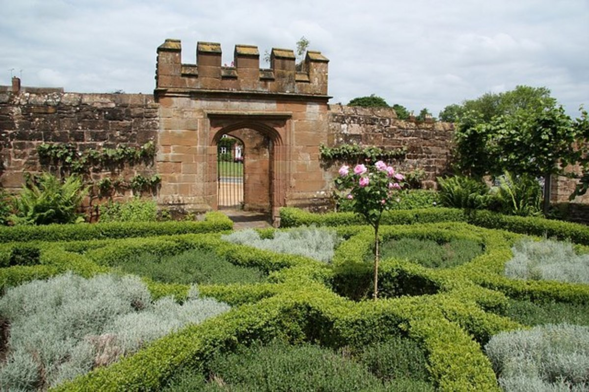 Herb garden at Kenilworth Castle