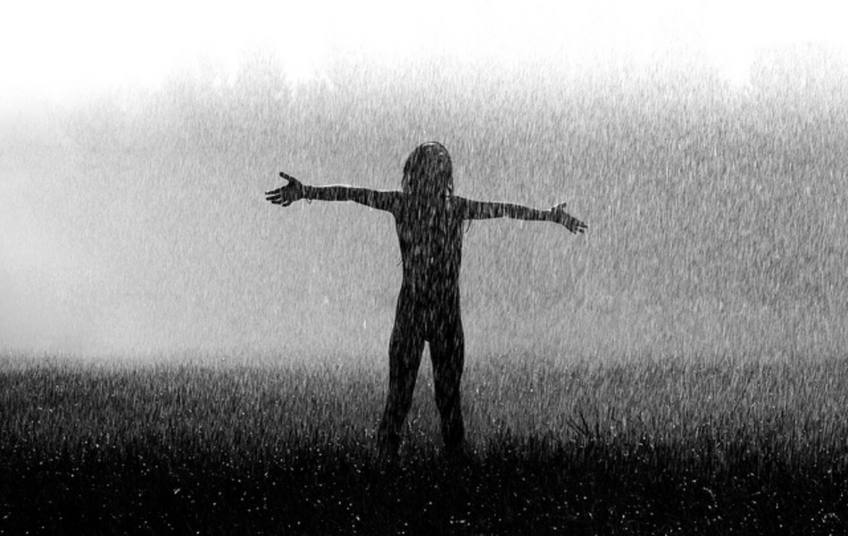 Why Do We Need the Rain Anyway? - The Garden Diary