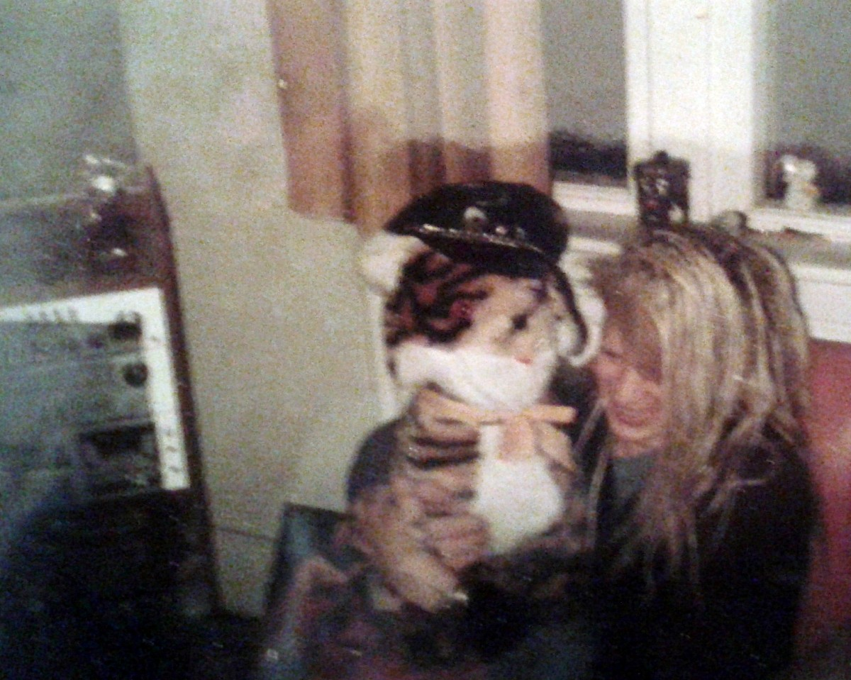 Michael (Dowie) at my house, 1984. My biker hat (mentioned earlier) had been relegated to my toy tiger by this time after someone said I looked like one of Village People when wearing it.