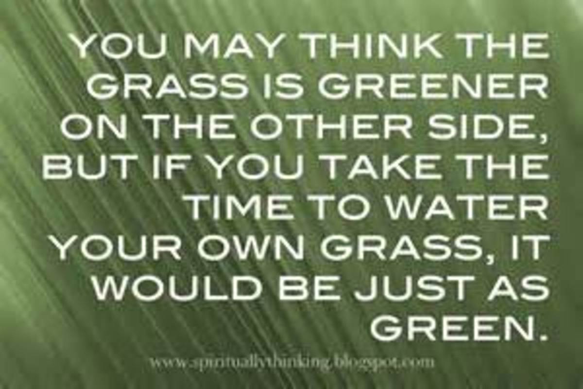 The Grass is Always Greener Disease
