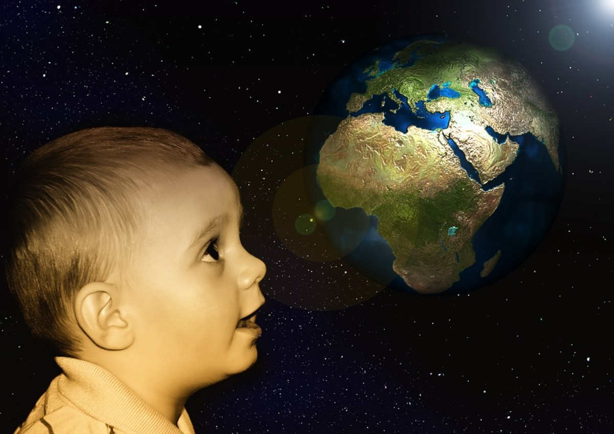 Mother Earth Needs Healing - Effects of Rainforests and Deforestation on Earth