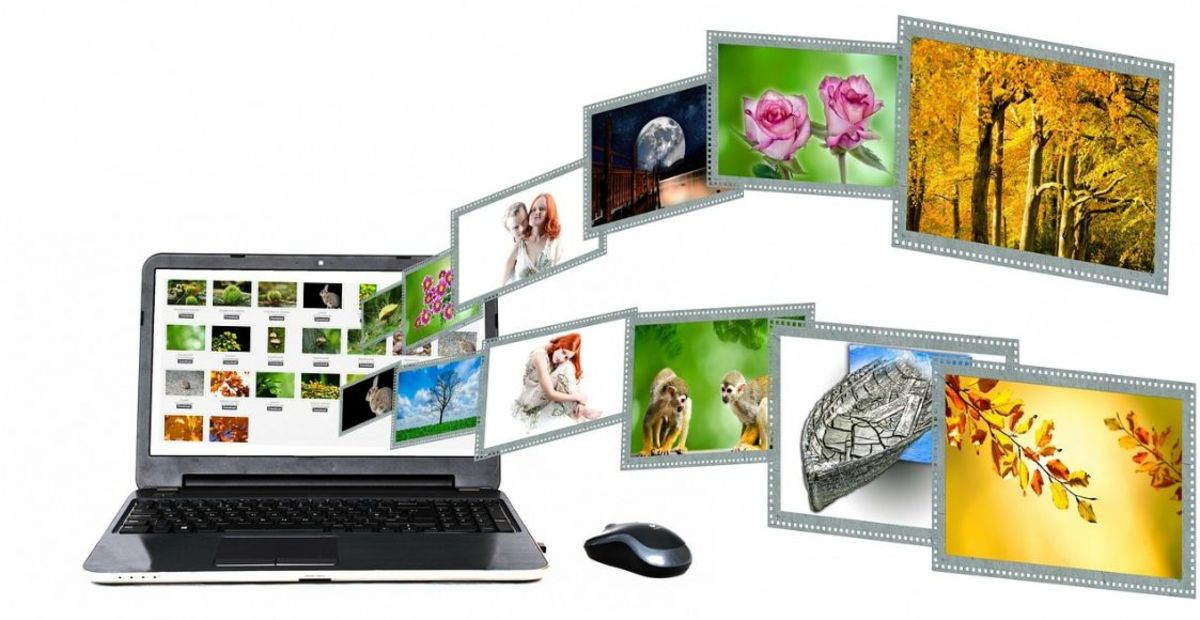 How to Download Website Content