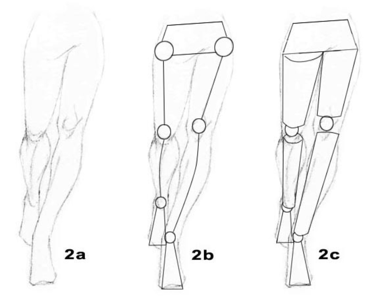 2a. Human Figure; 2b. Stick Figure; 2c. Manikin Figure